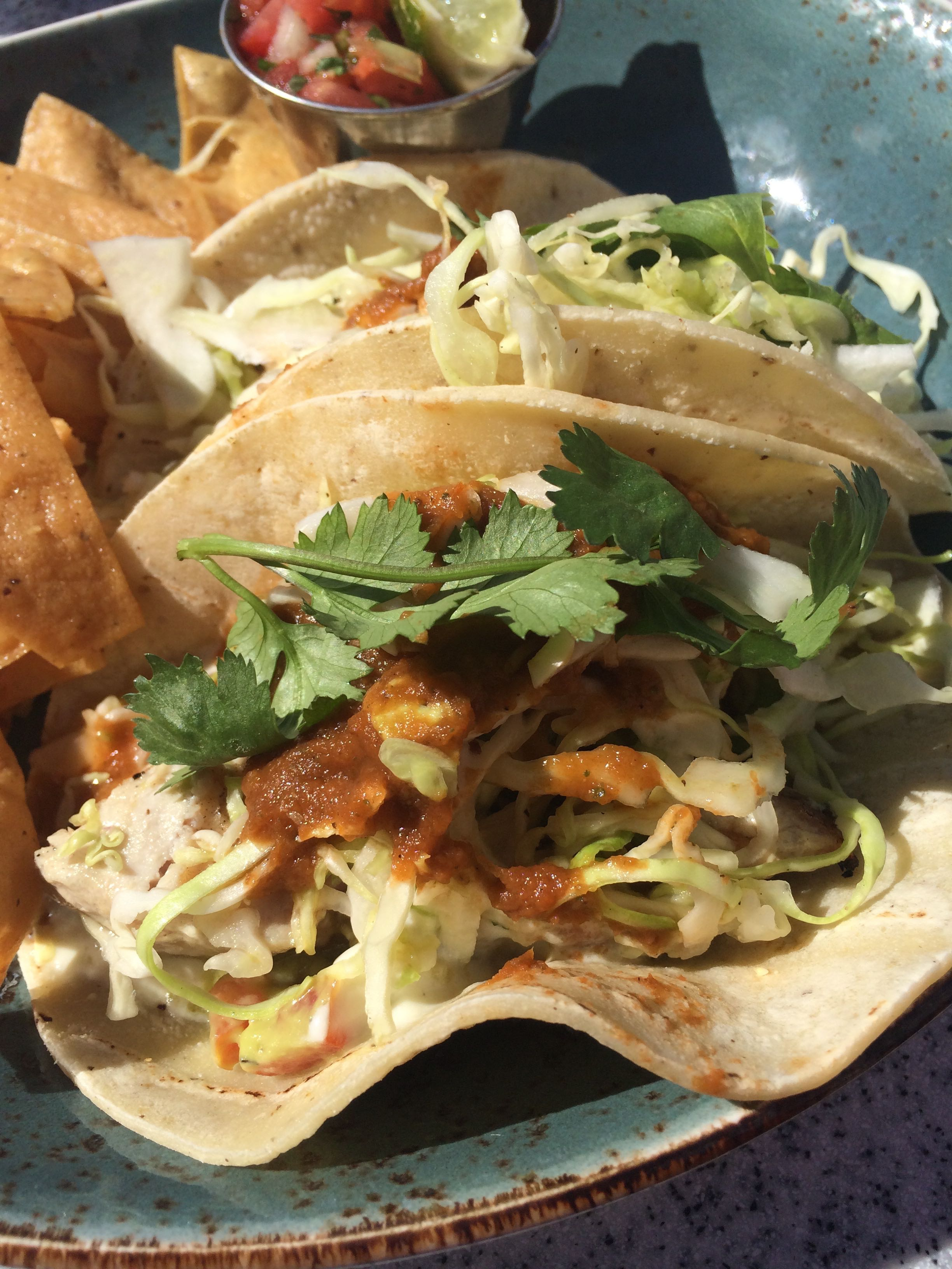 The best fish tacos in san diego helen ochyra for Best fish to use for fish tacos